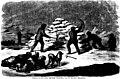 Die Franklin-Expedition und ihr Ausgang (microform) - Entdeckung der nordwestlichen Durchfahrt durch Mac Clure (sic), sowie Auffindung der Ueberreste von Franklin's Expedition durch Kapitän Sir (20607633016).jpg