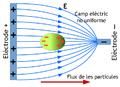 Dielectroforesi.png
