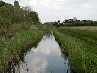 Fenland SAC - Wicken Fen