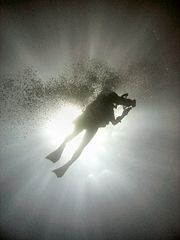 Diver Silhouette, Great Barrier Reef.jpg