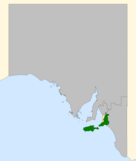 2008 Mayo by-election Australian federal by-election