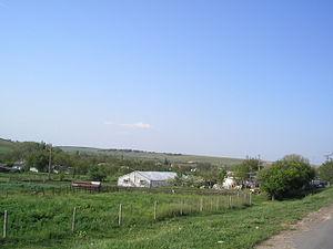 Dmitrovo (Crimea) 5.JPG