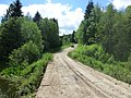 Dobryanskiy r-n, Permskiy kray, Russia - panoramio (219).jpg