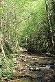 Dolina Osaničke reke 29.jpg