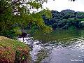 Don Alonso, Utuado, Puerto Rico - panoramio.jpg