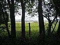 Downland from byway, Stockton Wood, near Stockton - geograph.org.uk - 504240.jpg