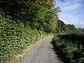 Driveway to Glencorse Mains - geograph.org.uk - 1598185.jpg