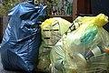 Duales System - German Trash.jpg