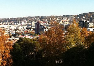 Dunedin in April 2011, looking across the University of Otago campus in autumn