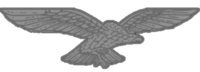 EAF Aviator badge.png