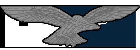 EAF Aviator badge