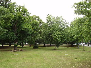 common land in Ealing, London