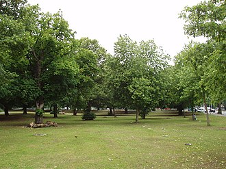 Ealing Common - Image: Ealing Common geograph.org.uk 17075