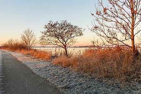 Eerste zonnestralen strijken over een winters landschap. Locatie, Langweerderwielen (Langwarder Wielen) en omgeving 01.jpg
