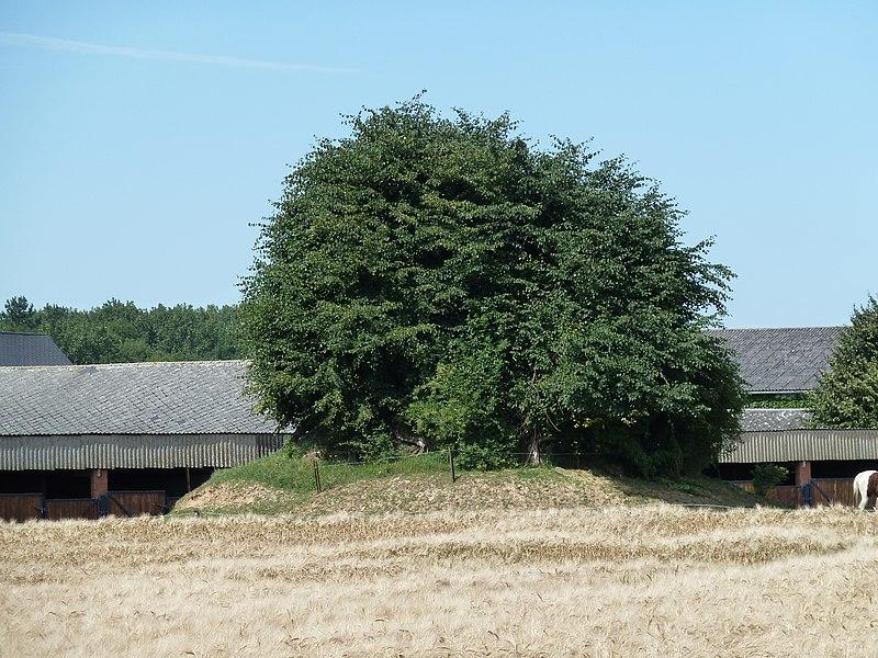 Tumulus de Hanret, Hanret, Éghezée, Belgique