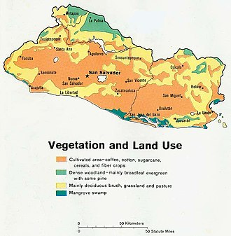 Geography of El Salvador - Vegetation and land use, 1980.