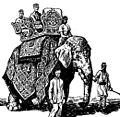 Elephant rider.jpg