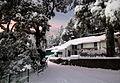 Ellangowan Snow (14644702587).jpg