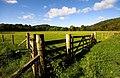 Empty field near Coom Burn Glenlee - geograph.org.uk - 993325.jpg