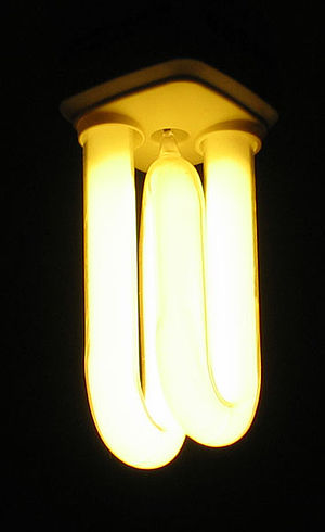 Energy Saving Light Bulb taken by C Ford, 29 J...