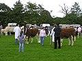 Enniskillen Agricultural Show - geograph.org.uk - 521141.jpg