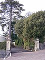 Entrance gates to Villa Languard - geograph.org.uk - 1773194.jpg