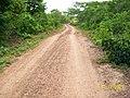 Estrada Acesso Nsa Senhora Coco Aparecida - panoramio.jpg