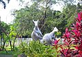 Evergreen Park, Haikou - kangaroo sculptures - 01.jpg
