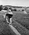 Fűrdőruhás alak halad a mezőn, 1954 Fortepan 25360.jpg