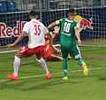 FC Liefering versus WSG Wattens (19. Mai 2017) 16.jpg