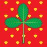 FLAG Jagodina.png