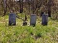 FLT O1 1.1 mi - Small cemetery near Midlum Rd - panoramio.jpg