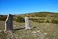 FR48-Florac-Menhirs de Cropilhac 02.jpg