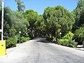 Faliraki, Greece - panoramio (4).jpg