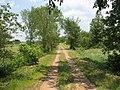 Farm in Longwood Wisconsin near Owen, Withee and Greenwood in Clark County - panoramio.jpg