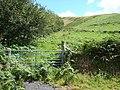 Farmland near Nant-hir - geograph.org.uk - 520709.jpg