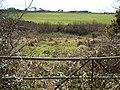 Field by the Camel - geograph.org.uk - 739066.jpg
