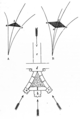Fig 36 -Sec of vaulting conoid of St Leu d'Esserent.png