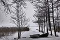 Finland 2016-02-20 (26329849595).jpg