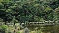 Fiordland N.P. 15.jpg