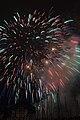 Fireworks - July 4, 2010 (4773117701).jpg