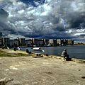 Fiske i Limhamn.jpg