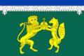 Flag of Vykhino-Zhulebino (municipality in Moscow).png