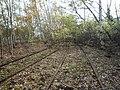 Flers-en-Escrebieux - Fosse n° 3 des mines de l'Escarpelle, voies ferrées (A).JPG