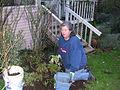 Flickr - brewbooks - Mary Ellen - Back Garden 2003.jpg