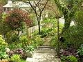 Flickr - brewbooks - Our Garden (30).jpg