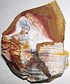 Flint (Vanport Flint, Middle Pennsylvanian; Nethers Flint Quarries, Flint Ridge, Ohio, USA) 225.jpg