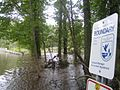 Flooded road at Great Swamp (6096614393).jpg