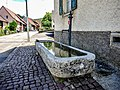 Fontaine. Winkel.jpg
