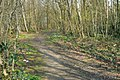 Footpath into Legg's Wood - geograph.org.uk - 382609.jpg